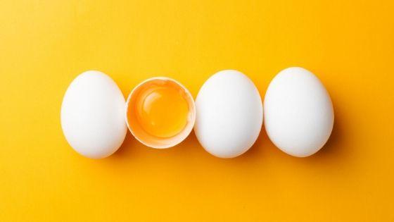 02 โปรตีนจากไข่